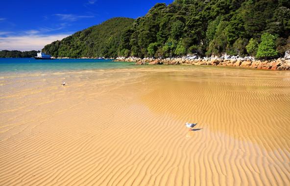 Praia ensolarada