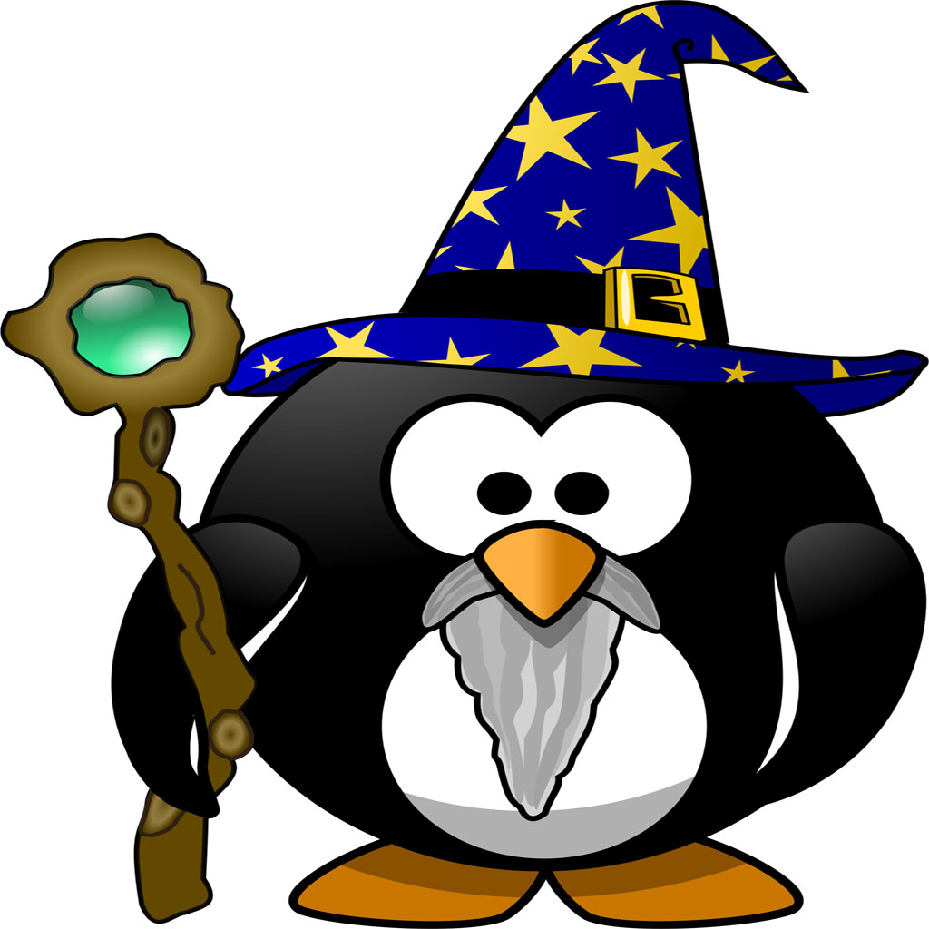 The Wizard Penguin