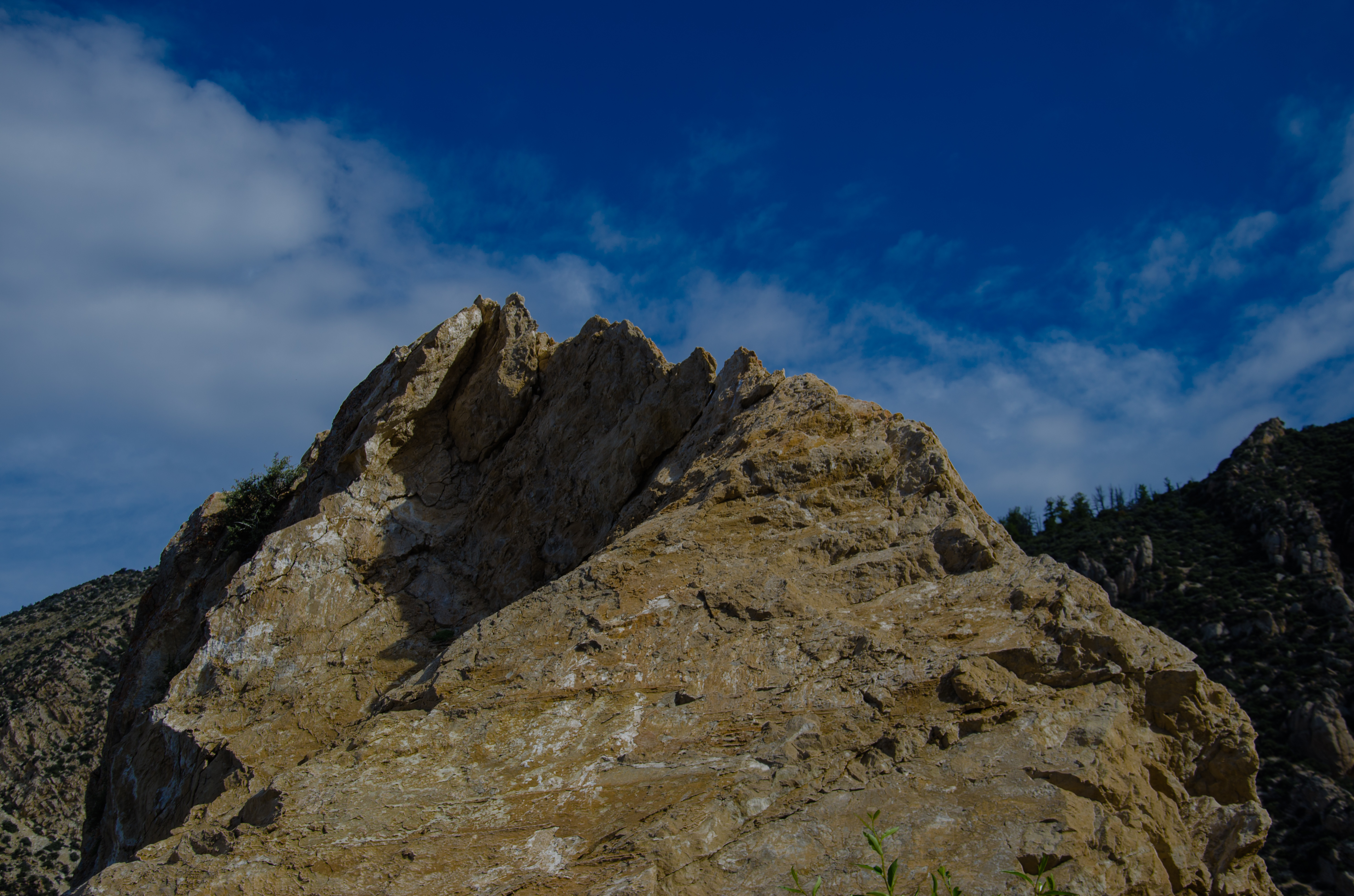 Black Hills Rock