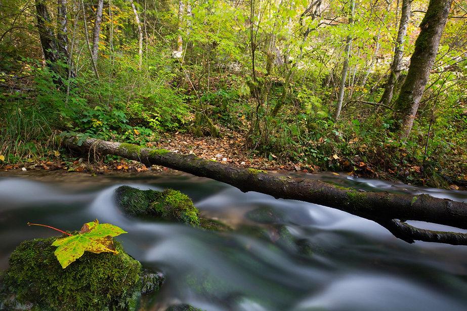 Paysages_Cascades_et_rivières_00005.jpg