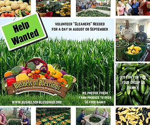 Gleaners Needed.jpg