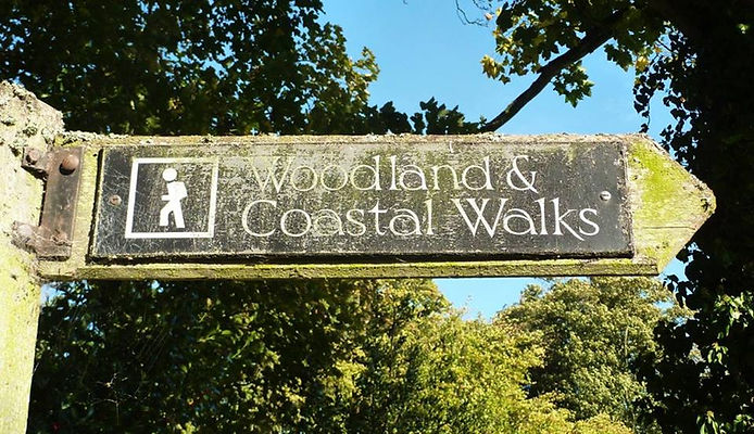 Quaker Barns │ Woodland and coastal walks nearby