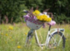 bike-flowers.jpg