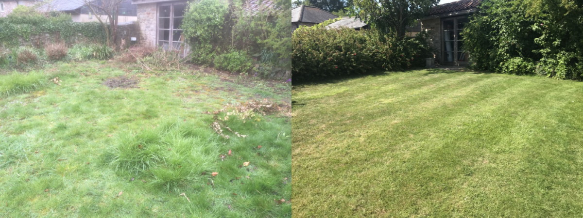 Dinder Lawn Renovation.jpg