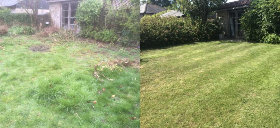Dinder Lawn Renovation.jpg