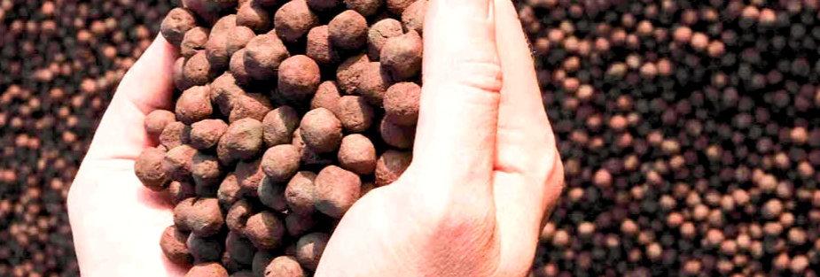 铁矿石球团 (Fe63.5%) 印度