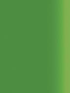 M04-AA-104 Green metalic - Vinterno