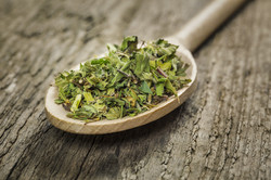 Herbs on Wooden Spoon