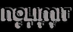 nolimit-logo