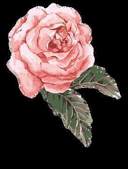 clip-art-transparent-watercolor-roses-cl