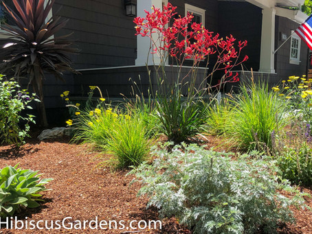Irrigation Challenges For Residential Gardens