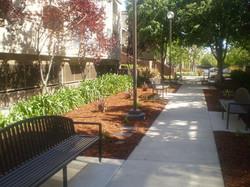 Clean Sidewalks