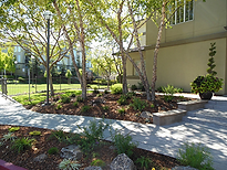 San Jose Landscape Management