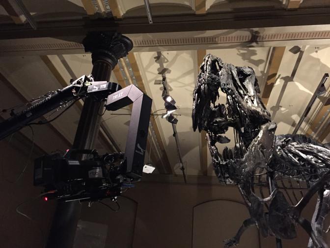 T.REX - Ein Dino erobert Berlin