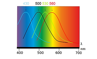 thumbnail_photometric chart image.png