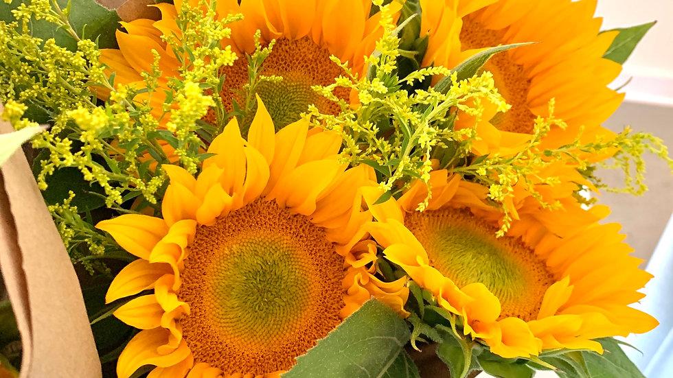 Sunflower Club