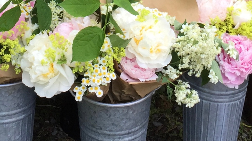 Bring on the Blooms Subscription