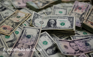 A ascensão do dólar