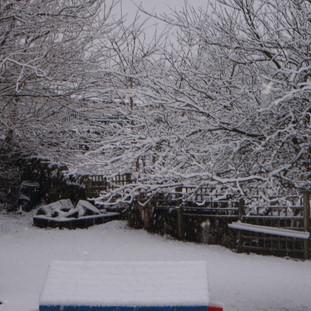 Mary Platt Preschool - Our garden in the snow
