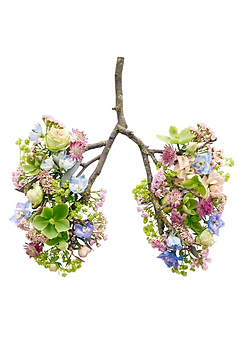 Qigong Breathing - Lungs made of flowers - CG Fitness Body and Mind