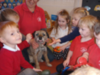 Mary Platt Preschool - Learning about animals