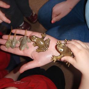 Mary Platt Preschool - Learning about nature