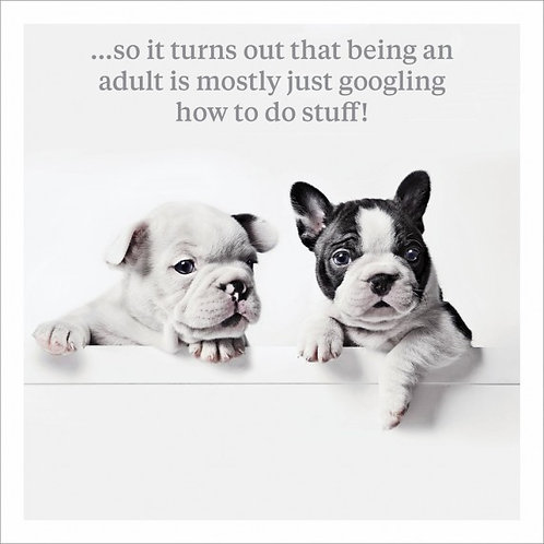 humorous card with dogs
