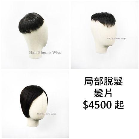 Hair Blooms Wigs 髮醫療假髮及髮片