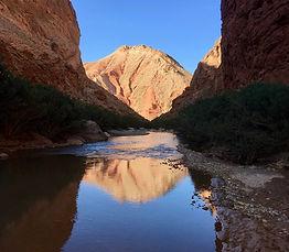 Zandvis Marokko Reizen Dadesvallei