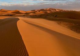 Zandvis Marokko Reizen Woestijn Erg Cheb