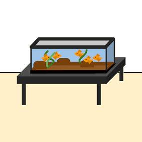 fish tank.jpg