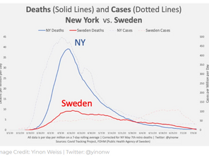"""Why Sweden Succeeded in """"Flattening the Curve"""" and New York Failed"""