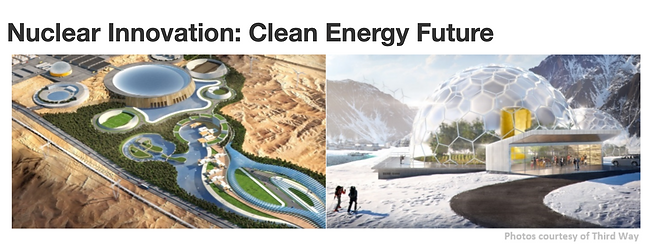 NICE CEM Clean Energy Future.png