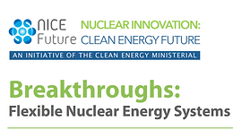 Flexible Nuclear Energy Systems in a Clean Energy World