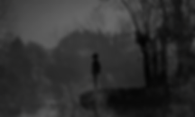 Steven David Lampley, Not All Childhoods, Psychological, Novel