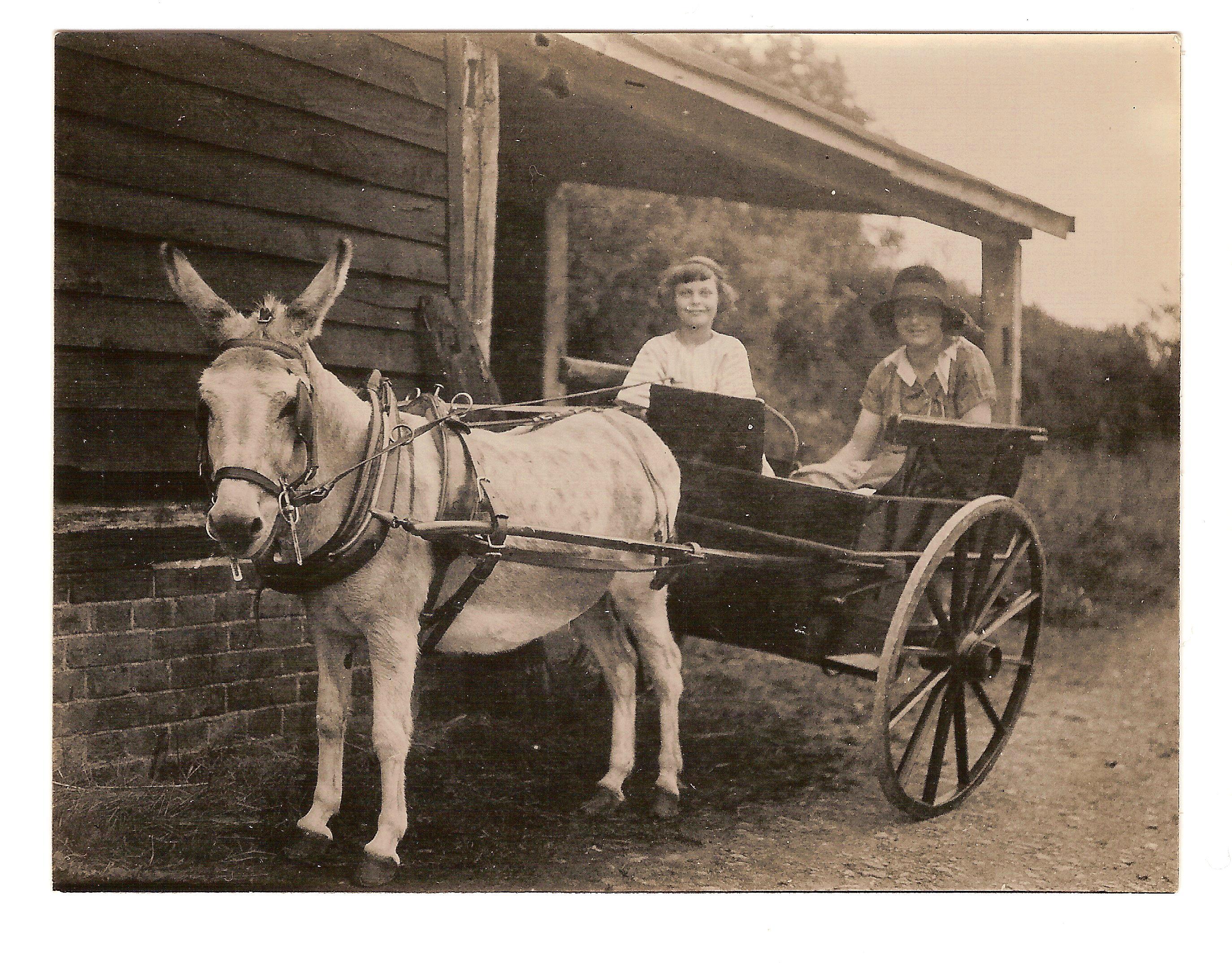 Norman O'Neill - Donkey Cart