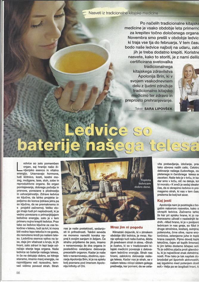 REVIJA JANA ZARJA NOVEMBER 2020-STRAN1