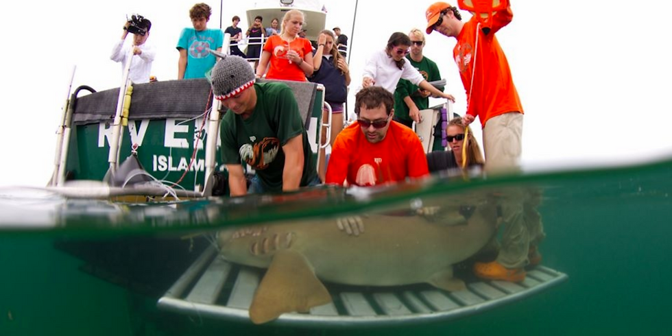 Sharks4Kids Presents: Why Sharks Matter with Dr. David Shiffman