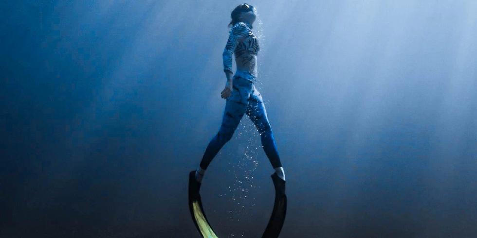 Sharks4Kids Presents: Intro to Sharks with Jenny Bortoluzzi