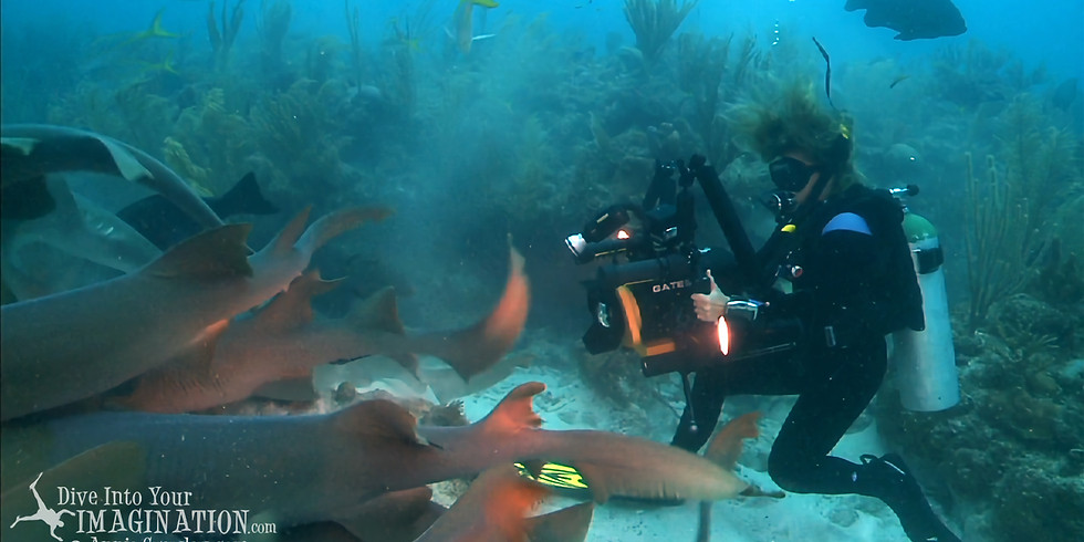 Sharks4Kids presents: Filming Marine Life with Annie Crawley