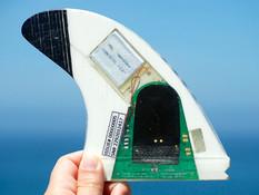 smartfin-science-surfing.jpg