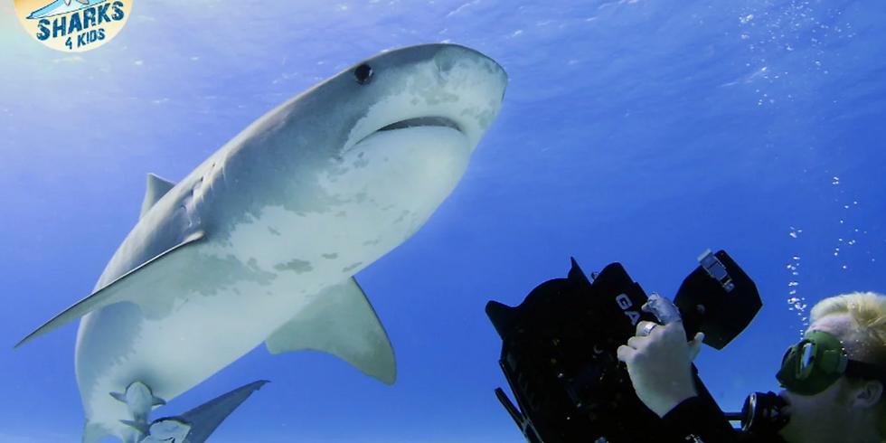 Sharks4Kids Presents: Shark Adaptations with Marine Biologist & Sharks4Kids Founder