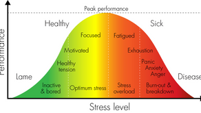 Stress-busting Foods and Tips for Students in the Health Field