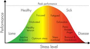 Photo credit: Thriving Under Pressure https://drandreadinardo.com/2016/10/05/whats-your-stress-threshold/