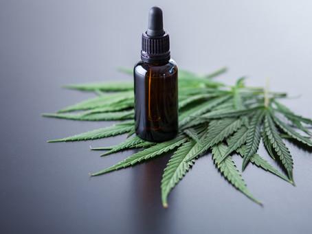 Especialista explica o que muda com aprovação de medicamentos à base de Cannabis