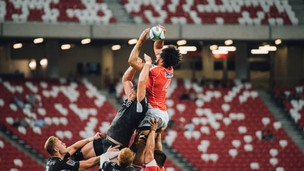 Rugby World Cup 2023 Semi-Finals