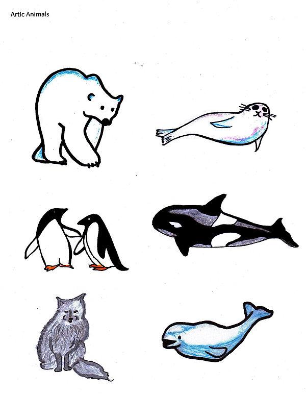 Kidfunideas.com Arctic animals picture of the animals