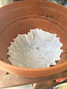 Kidfunideas.com tip hero tip: line a flowerpot with a coffee filter to prevent soil loss when watering picture