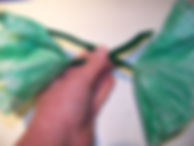 Kidfunideas.com color changing flower picture of attaching the two stems together