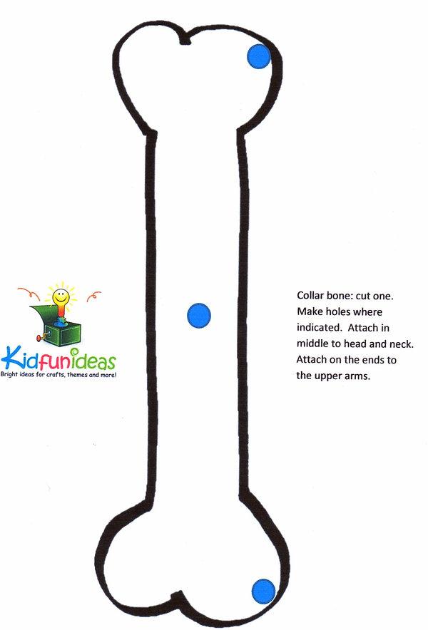 Kidfunideas.com paper plate skeleton pattern